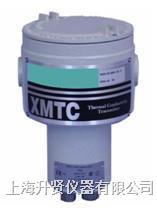 氢纯度分析仪 XMTC