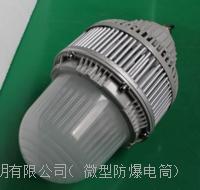 OHSF8840防眩LED平台灯泛光灯投光灯防爆固态灯50w100w150w厂家直销 OHSF8840