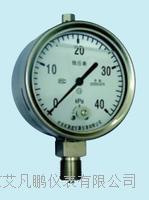 布莱迪不锈钢充油耐震膜盒微压表 YEFN-100