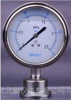 布莱迪YTNP-98HF6全钢轴向隔膜压力表 全钢轴向隔膜压力表