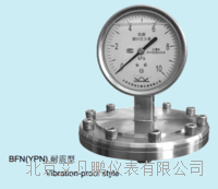 布莱迪 BFN(YPN) 耐震型防腐膜片压力表 BFN(YPN)
