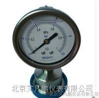 布莱迪 卫生型卡盘连接防腐压力表 PTY-063