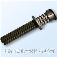 电加热器 BGY2
