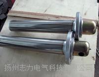 SRY6-1/2/3型护套式电加热器 SRY6-1/2/3
