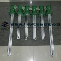 BRY2型防爆电加热器 BRY2