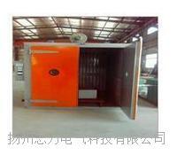 RFZW-200系列电热恒温鼓风干燥箱 RFZW-200系列