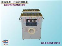 标准电流互感器 HL