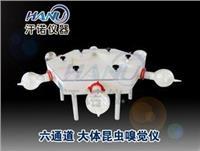 上海大体昆蟲嗅覺儀  HN6-30-300