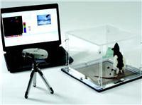 四足承重动态测试仪 Dynamic Weight Bearing Test