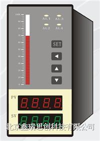 液位显示仪 QQV