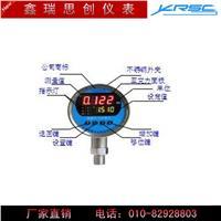 XR80K系列智能压力控制仪(开关) XR80K1