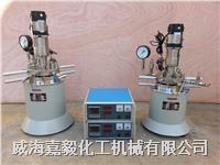 实验室反应釜 GSH系列实验室反应釜