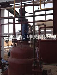 威海嘉毅化工机械专业生产高压加氢反应釜、高压加氢釜、高温高压加氢釜 GSH-1000L