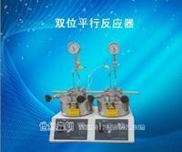 双位平行反应器