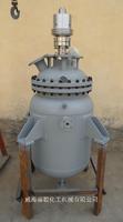 10ML 不锈钢微型反应器