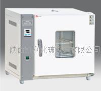 天津泰斯特電熱恒溫幹燥箱(202)