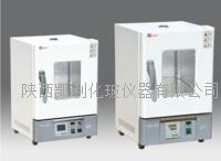 泰斯特電熱恒溫幹燥箱WHL-30(B)/WHL-30(B)E