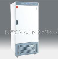 人工氣候箱(RGX)