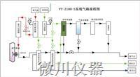 VT-Z100-S在线焦炉煤气分析系统
