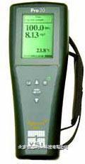 YSI Pro20便携式溶氧仪 YSI Pro20