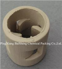 Ceramic Pall Ring BS-CPR