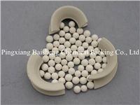 ceramic saddle ring BS-ICS