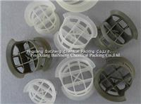 High Efficiency Plastic Conjugate Ring Tower Packing BS-PCR