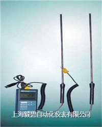 WRNK-181、WREK-181型手柄式热电偶 WRNK-181、WREK-181