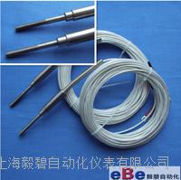 电缆式热电阻WZP-191非标定制M6螺纹 WZP-191