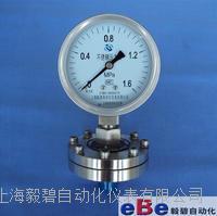 上海全不锈钢隔膜压力表YTP-100BF  M20*1.5 YTP-100BF  M20*1.5