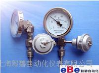 上海WTYY系列不锈钢远传温度计 WTYY系列