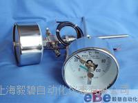 双支远传电接点双金属温度计WTYY2-1030-X2 WTYY2-1030-X2