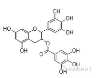 (-)-表没食子儿茶素没食子酸酯 EGCG CAS:989-51-5