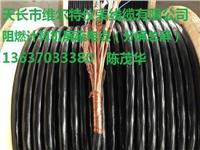 ZR-DJYPVRP-2*2*1.5阻燃计算机屏蔽电缆【维尔特牌电缆】13637033380