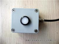 光照度传感器(室外型) YSDZ-G/W