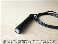 管式光照强度传感器 RY-G/BW