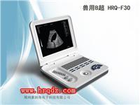 笔记本式B超HRQ-F30(兽用B超测孕仪) HRQ-F30