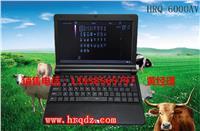 笔记本B超/便携式牛用B超/牛用B超机 HRQ-6000AV