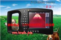 猪用B超机/ 猪用B超多少钱一台/猪用B超的价格哪家的好 HRQ-5000AV