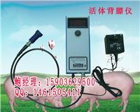 猪场专用活体背膘仪测猪背膘厚度直销报价 B-07