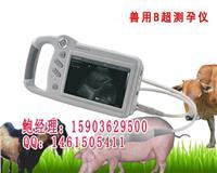 手持式兽用B超妊娠诊断仪多少钱一台 HRQ-P09
