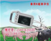 厂家直销西藏青海便携式兽用B超机报价 HRQ-P09