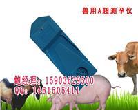 动物A超测孕仪多少钱一台/听声音识别怀孕仪器 兽用A超测孕仪
