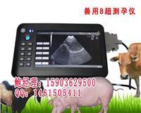 山东便携式羊用B超机,羊用B超多少钱一台 HRQ-5100AV
