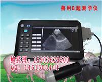 黑龙江鸡西便携式牛羊B超机最便宜的多少钱一台 HRQ-5100AV