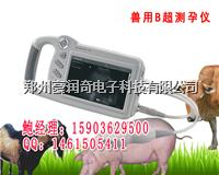 北京天津饲料公司采购牛用B超机测孕仪多少钱一台 HRQ-P09