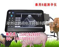动物防疫站招标采购兽用动物B超机最低渠道报价