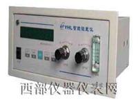 微量氧测定仪 WE型