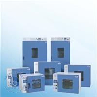 鼓风干燥箱烘箱 DHG-9123A