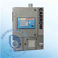 燃烧式在线热值测量系统 Carrow2002